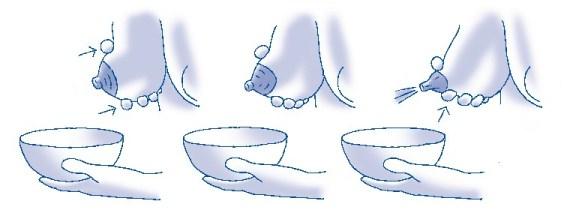 borstvoeding en kolven